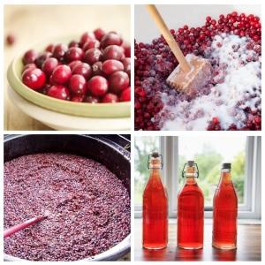 Как приготовить вино из клюквы
